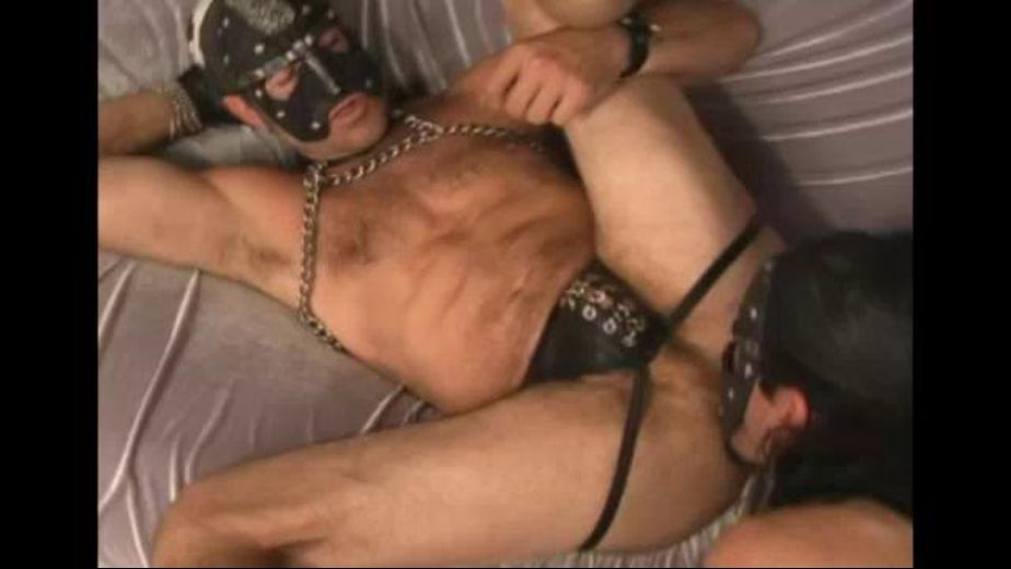Man Meat Hole Destroyers, produced by KnightBreeders. Video Categories: Leather, Bareback and Pigs.