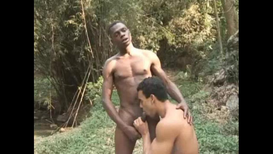 Wild Man Meat In The Woods, produced by GP Productions. Video Categories: Blowjob and Latin.
