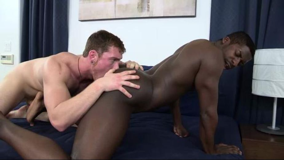 Connor Maguire Pounds A Dark Ass, starring Connor Maguire, produced by Cocksure Men and Jake Cruise Media. Video Categories: Anal, Black, Safe Sex, Muscles and Interracial.