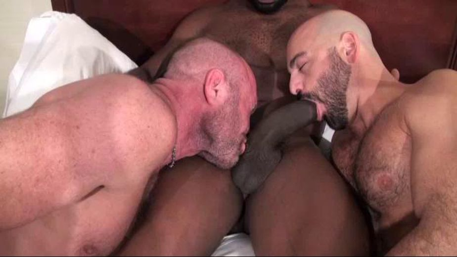 Cutler X Is Large and In Charge, starring Cutler X, Adam Russo and Chad Brock, produced by Ricky Raunch. Video Categories: Blowjob, Muscles, Anal, Big Dick, Threeway and Uncut.