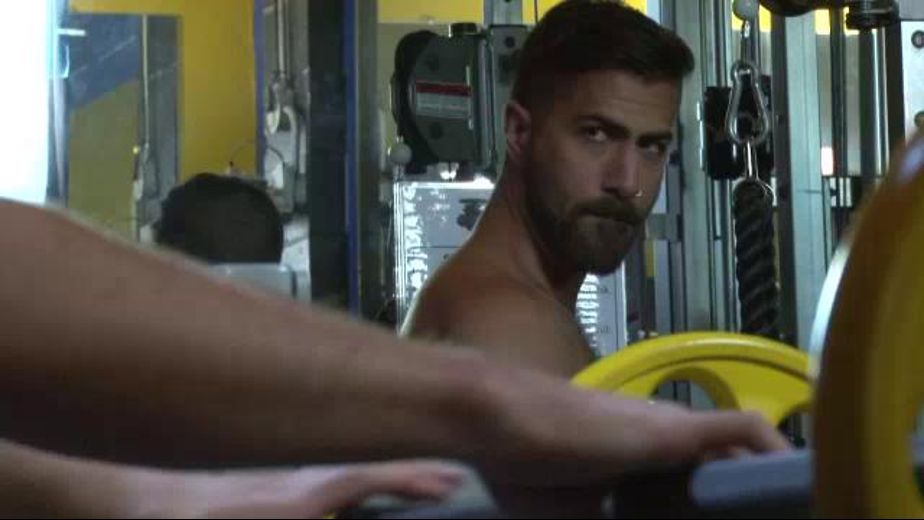 Get Pumped Up With Adam Ramzi and Brandon Moore, starring Brandon Moore and Adam Ramzi, produced by NakedSword Originals. Video Categories: Muscles and Blowjob.