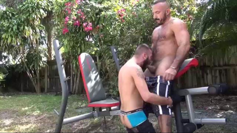 Ethan Takes Alessio Intensely, starring Ethan Palmer and Alessio Romero, produced by Factory Video Productions and Cum Pig Men. Video Categories: Bear and Muscles.