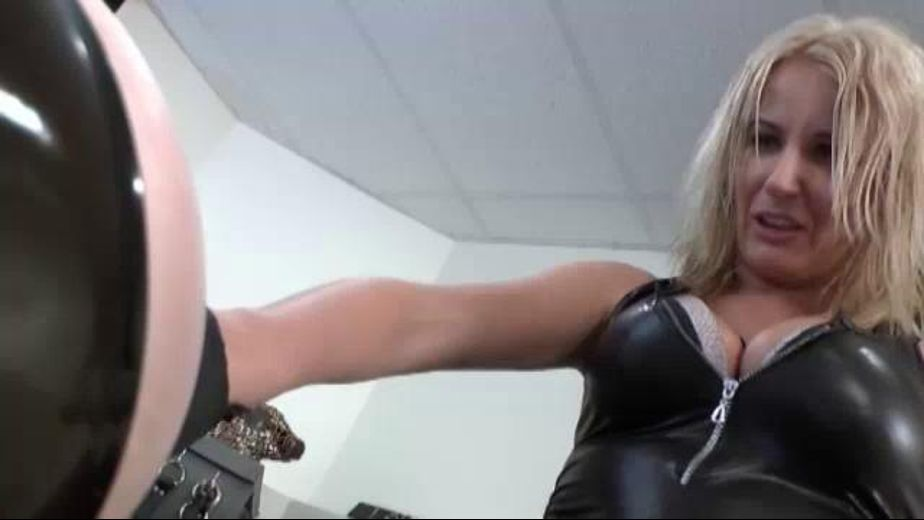 Mistress Olga Finds A New Pet, starring Mistress Olga, produced by Lakeview Entertainment. Video Categories: Fetish, BDSM and Blondes.