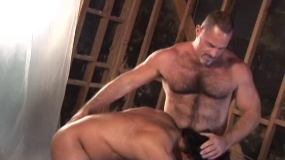 Clash of the Mighty Construction Bears, starring Tom Chase and Tim Kelly, produced by Bear Omnimedia and Butch Bear. Video Categories: Blowjob, Muscles, Anal and Bear.