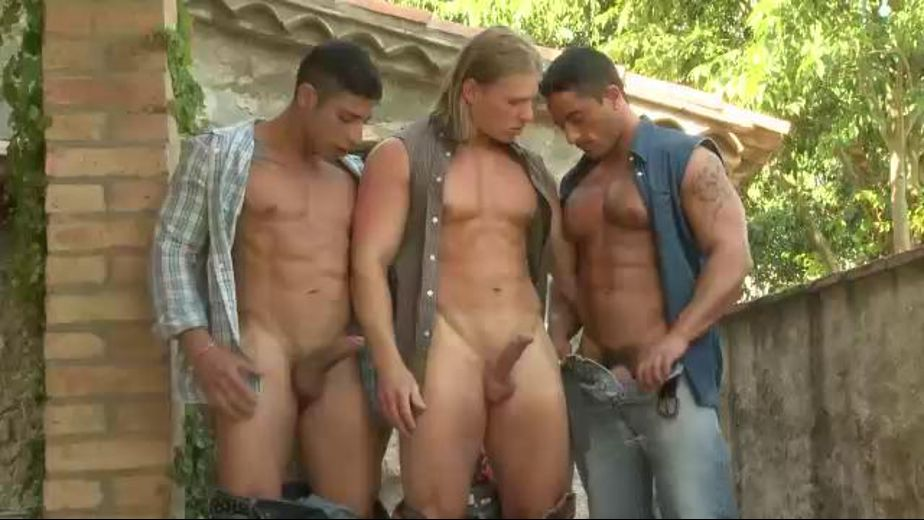 Bringing Home a Strange Man, starring David Kadera and Robin Sanchez, produced by Kristen Bjorn Productions. Video Categories: Threeway, Muscles and Blowjob.