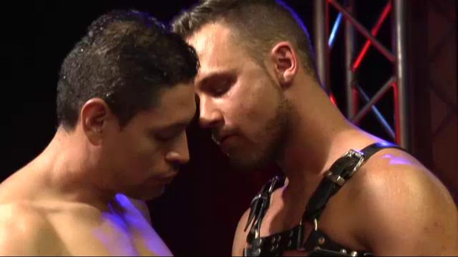 Logan Moore Humps John Rodriguez Like an Animal, starring John Rodriguez and Logan Moore, produced by Dark Alley Media. Video Categories: Bareback, Blowjob, Leather, Muscles and Anal.