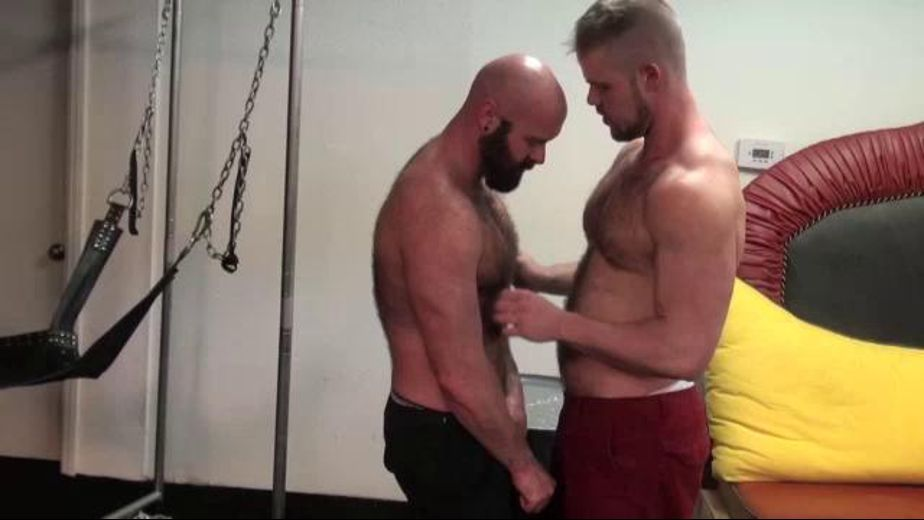Big Horny Hairy Fuckers, starring Bryan Knight and Luke Harrington, produced by Breed Me Media. Video Categories: Amateur, Muscles and Bear.