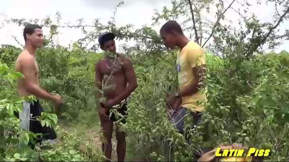 Naughty Tropical Piss Party, starring Martin *, Alex and Omar, produced by Latin Piss. Video Categories: Threeway, Uncut, Fetish, Latin, Interracial and Blowjob.