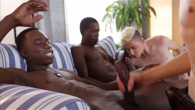 Interracial Blowjob With Gay Studs