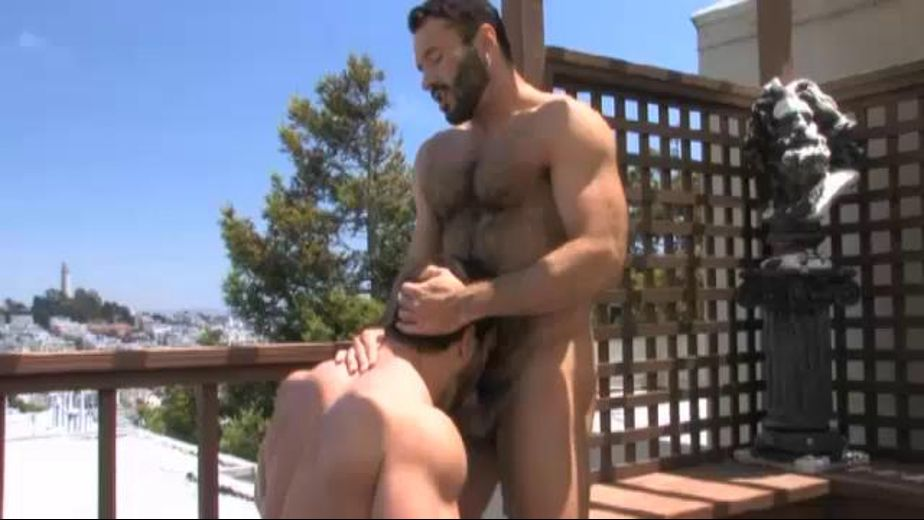 Condo Bears Caught on Video, starring Wilfried Knight and Vince Ferelli, produced by Falcon Studios Group and Raging Stallion Studios. Video Categories: Bear, Blowjob and Muscles.