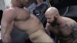 Shay Michaels is Mastered by a Hairy Bear.