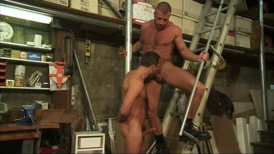 Hunter Marx and Will Swagger in the Basement, starring Hunter Marx and Will Swagger, produced by Titan Media. Video Categories: Anal, Blowjob and Muscles.