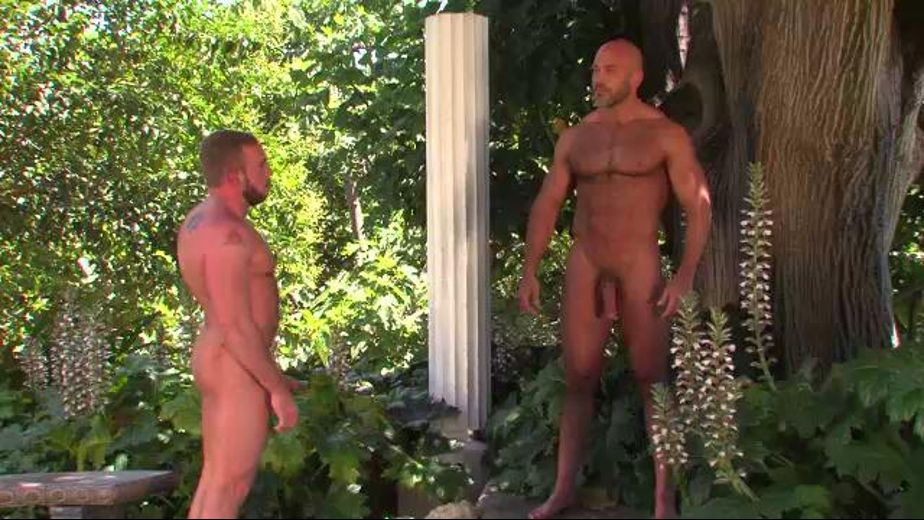 Johnny Parker Meets Jesse Jackman in a Dream, starring Jesse Jackman and Johnny Parker, produced by Titan Media. Video Categories: Bear, Blowjob and Muscles.
