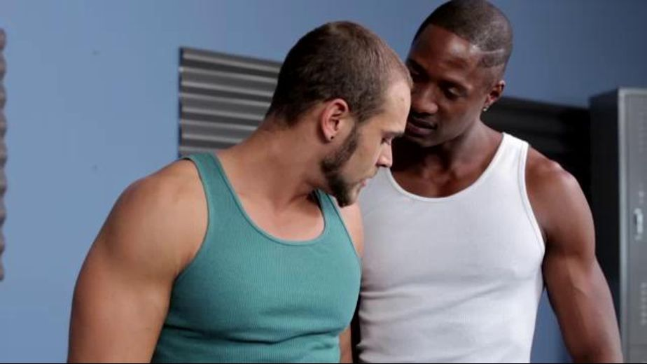 Derek Maxum Trains Brock Avery, starring Brock Avery and Derek Maxum, produced by Next Door Ebony. Video Categories: Black, Interracial, Big Dick, Blowjob, Muscles, Jocks and Safe Sex.