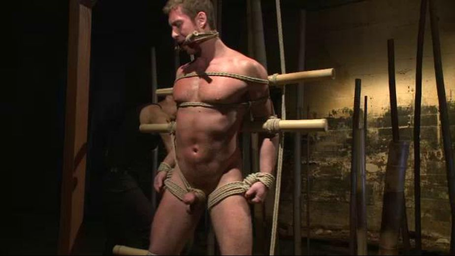 Can Connor Maguire Stand the Punishment?, starring Connor Maguire, produced by KinkMen. Video Categories: Muscles, Fetish and BDSM.
