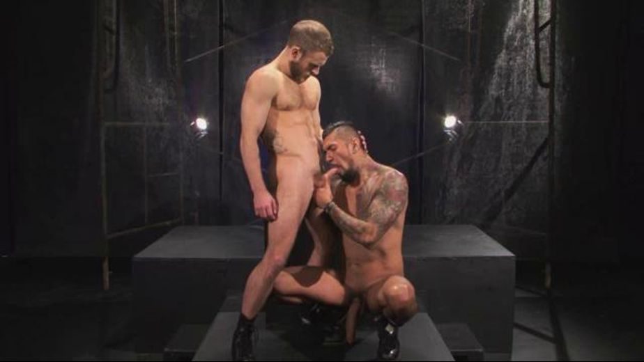 Boomer Banks Gives Some and Gets Some, starring Shawn Wolfe and Boomer Banks, produced by Falcon Studios Group and Falcon Studios. Video Categories: Muscles, Safe Sex, Anal, Blowjob and Big Dick.