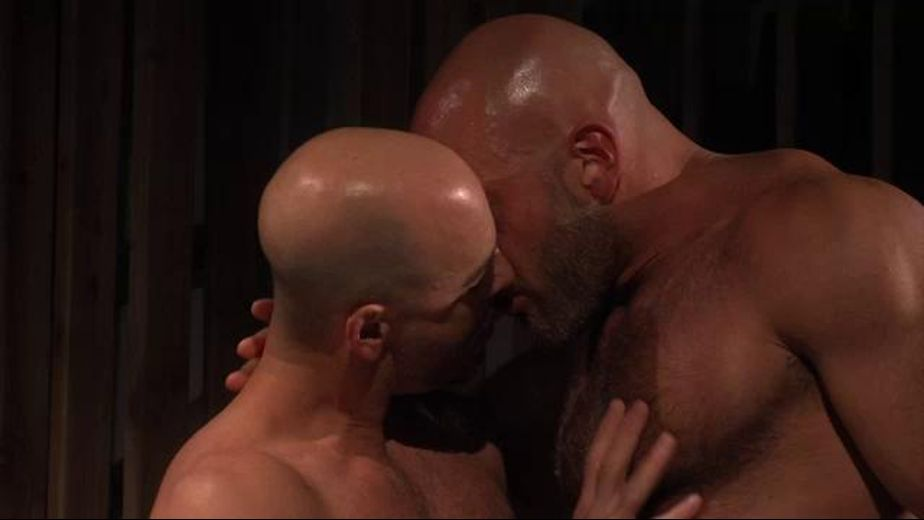 Power Bear Jesse Jackman, starring Adam Russo and Jesse Jackman, produced by Titan Media. Video Categories: Blowjob, Bear and Muscles.