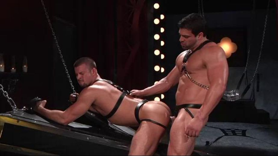 Vince Ferelli Discovers Kyle King's Perfect Ass, starring Kyle King and Vince Ferelli, produced by Falcon Studios Group and Hot House Entertainment. Video Categories: Leather, Muscles and Blowjob.
