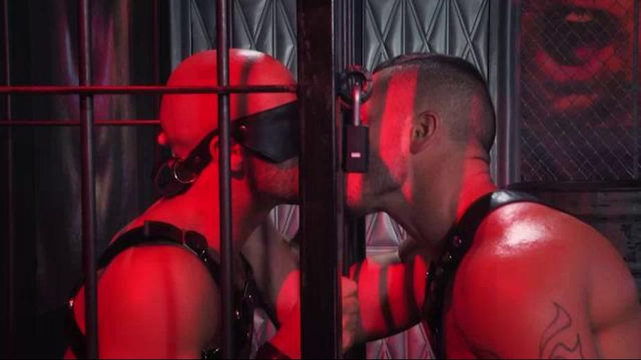 Valentin Petrov Has Sean Zevran Under Control, starring Valentin Petrov and Sean Zevran, produced by Falcon Studios Group and Hot House Entertainment. Video Categories: Leather, Blowjob and Fetish.