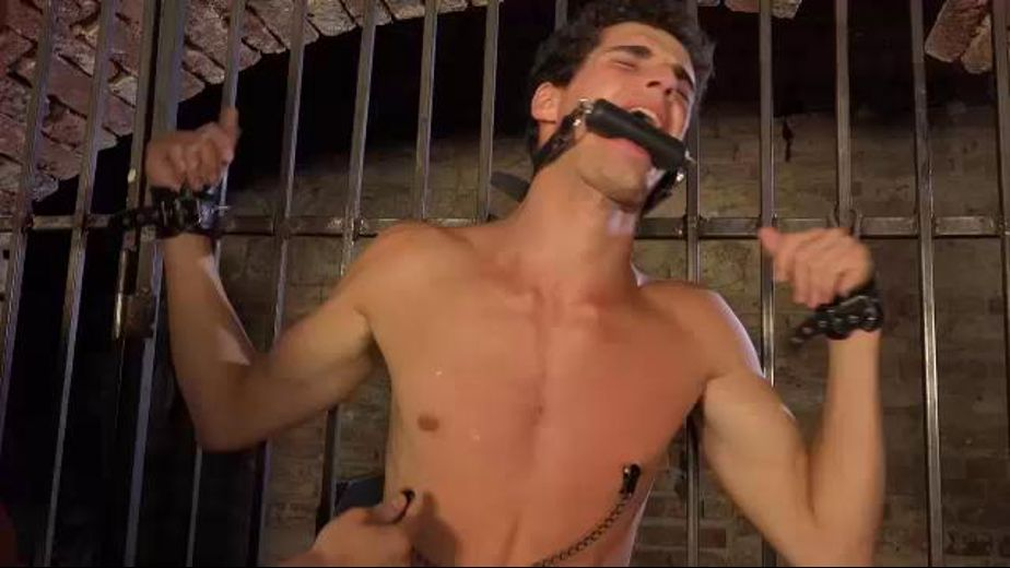 Nipple Torment and Cat O'Nine Tails, starring Borek Sokol, produced by William Higgins. Video Categories: Euro, College Guys, Leather, BDSM, Fetish and Uncut.