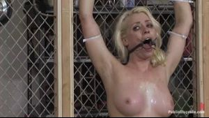 Lorelei Lee Is Chained To A Fence.