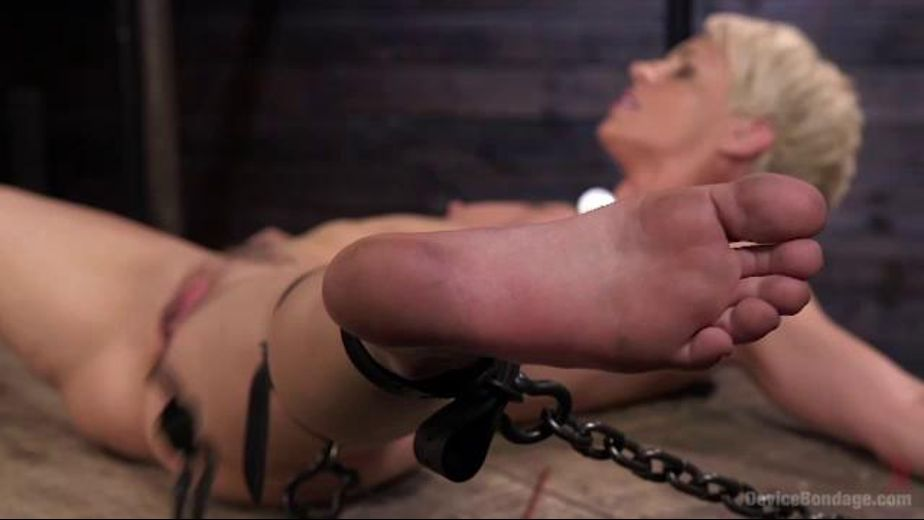 Cougar Gets The Tables Turned, starring Helena Locke, produced by Kink. Video Categories: Blondes, Fetish and BDSM.