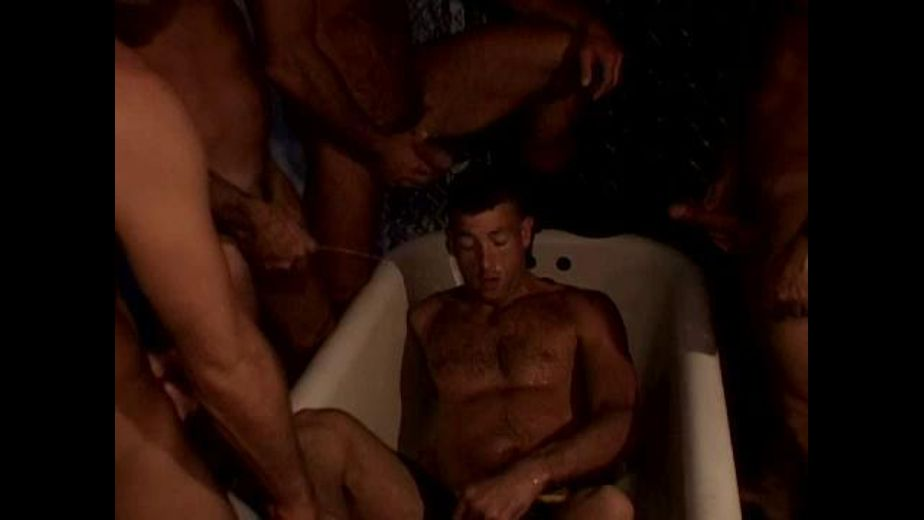 Getting Dirty In The Bathroom, starring Steve Parker, Steve Wylie and Steve