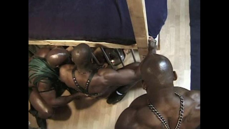 Big Black Men Capture and Cage Racist NeoNazis, starring Bobby Blake, Flex Deon, Chris Blake, Dallas Chalmers, Chane Adams, Eric Top Stud and Bud Hole, produced by Dick Wadd. Video Categories: Pigs, Black, BDSM, Muscles and Interracial.