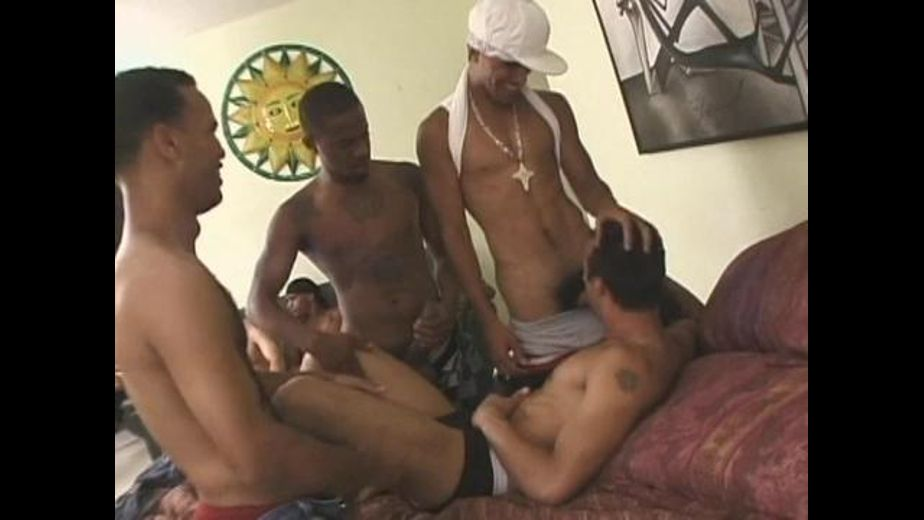 Latin Boys Having Fun In New York, produced by Channel 1 Releasing, All Worlds Video and Big City Video. Video Categories: Big Dick, GangBang, Latin and Safe Sex.