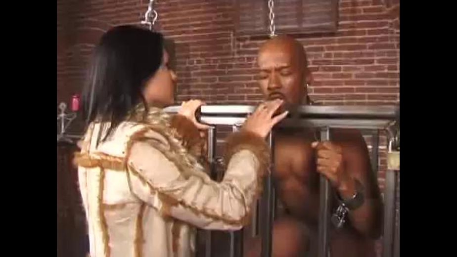 Ariana Jollee and Her Priceless Man Collection, starring Ariana Jollee, produced by Jewel De'Nyle Productions and Fifth Element. Video Categories: Brunettes, Fetish, Gonzo and BDSM.