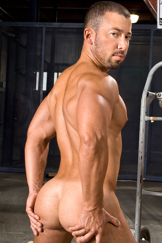 rider gay dominik