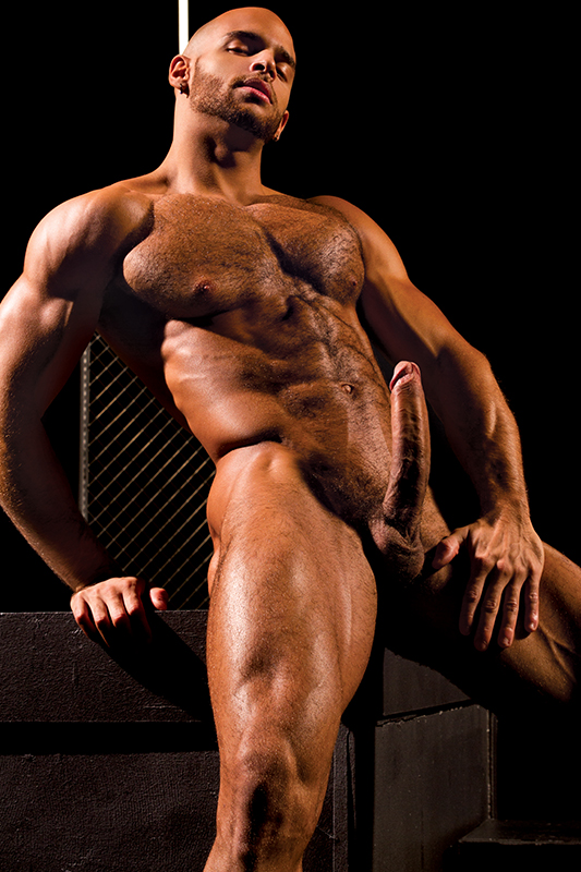 sean zevran, gay, porn, muscles, bear, jock, big dick, falcon edge