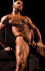 sean zevran, gay, porn, muscles, big dick